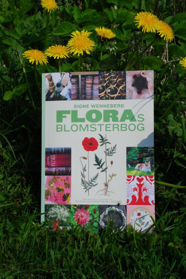 flora bog