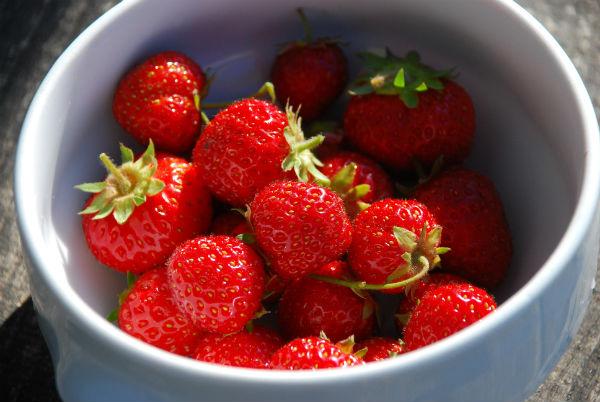jordbær j